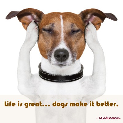 Quote of the Day - Dogs Rule!