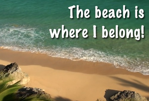 Quote of the Day - The Beach is Where I Belong